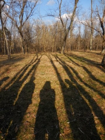 Sweet Briar Shadows
